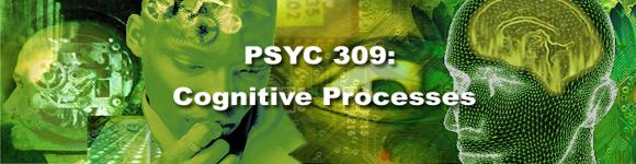 PSYC 309